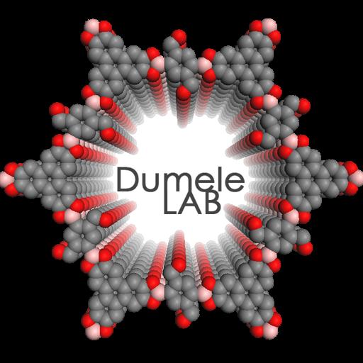 Dr  Oliver Dumele – DumeleLAB